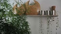 Hunajakoto, green plants